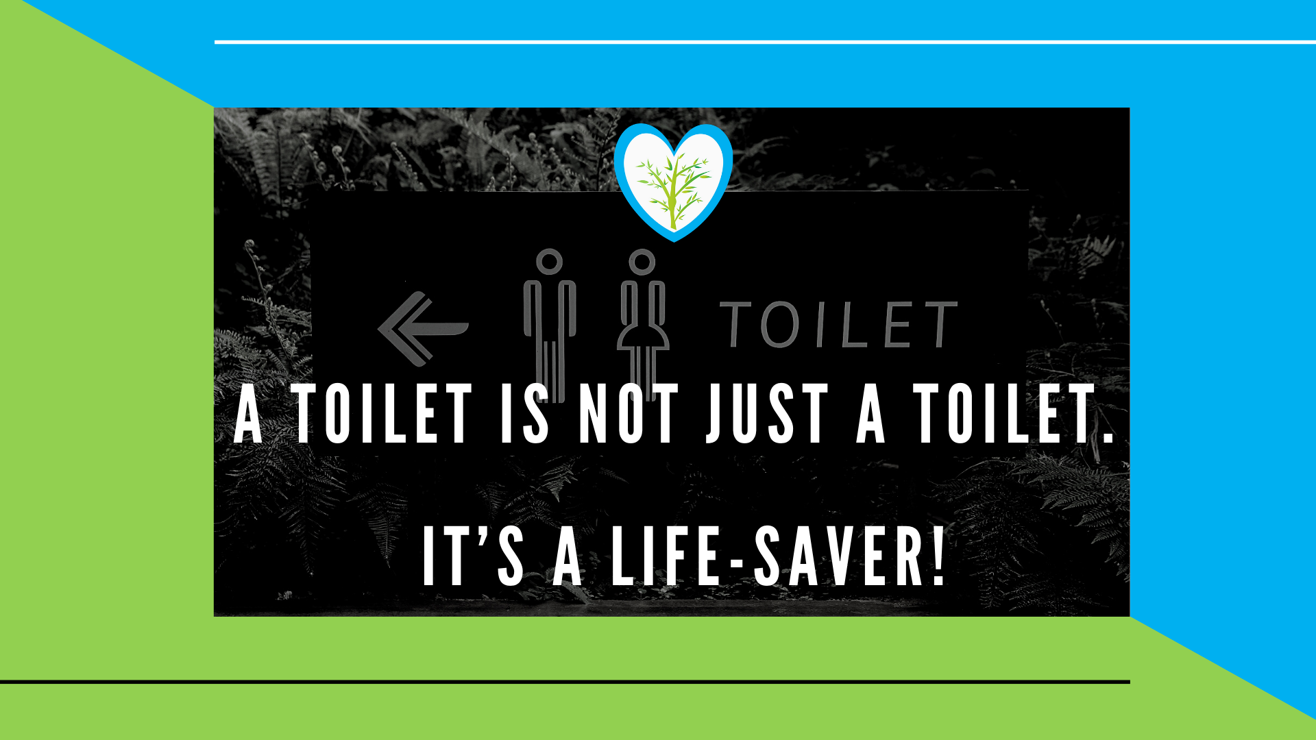 A toilet is not just a toilet. It's a life-saver _ Febbrisia